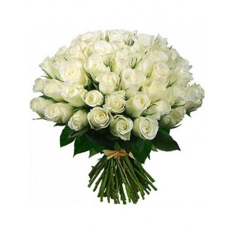 51 balta roze Rozes ar piegādi