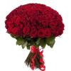 101 красная роза Розы