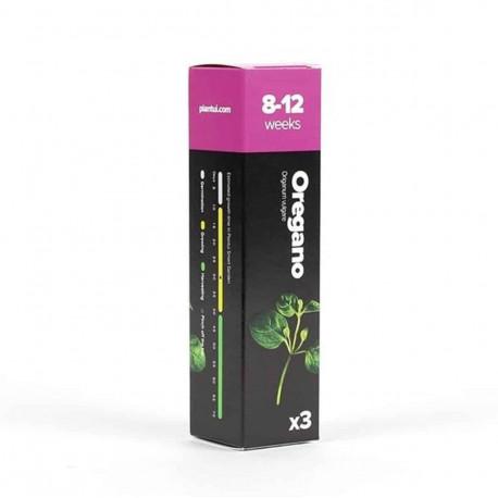 Oregano - Plantui capsules Smart Garden