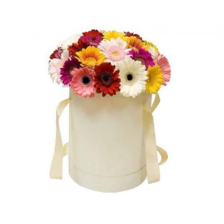 Bloom Box ar gerberām Ziedu kastītes