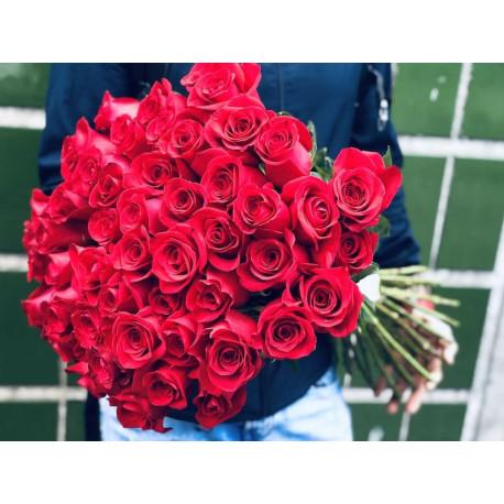 51 sarkana roze Rozes