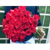 51 red rose Roses