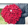 101 red rose Roses