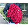 101 sarkana roze Rozes