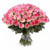 101 розовая роза Розы