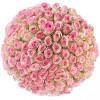 101 rozā roze Rozes