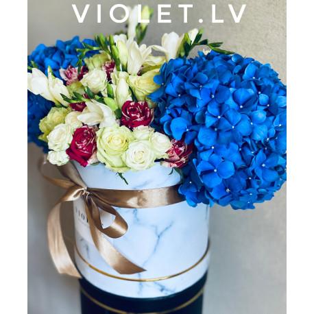 Flower Box - Blue Sky Flower boxes