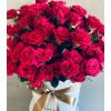 Rozā krūmu rozes Ziedu kastītes