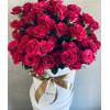 Pink bush roses Flower boxes