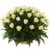 Цветочная корзина из 51 розы Корзины цветов